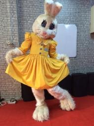 tavşan-lily